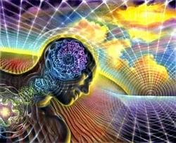 Мозг 07