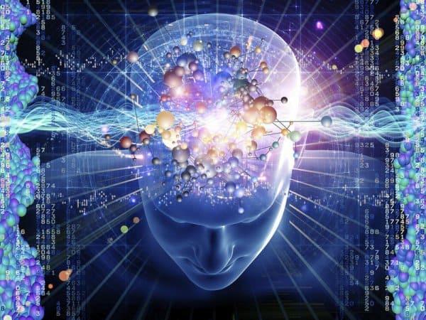 Мозг 08