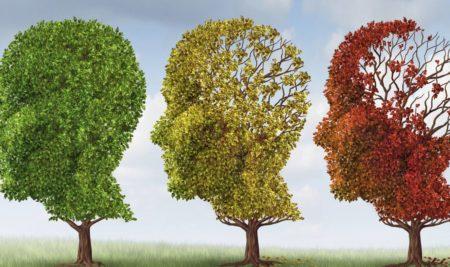 Игры разума. 20 простых способов развить собственный интеллект.