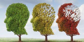 Мозг не стареет — только улучшается. Но надо тренироваться.