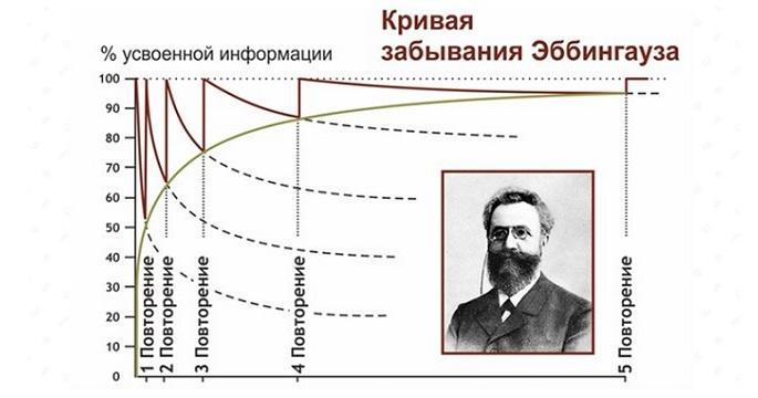 www.snail.org.ua_Кривая_Забывания_01